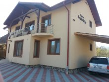 Guesthouse Mureş county, Infinity House