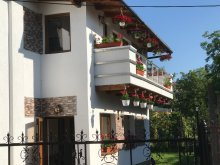 Villa Cluj county, Luxury Apartments
