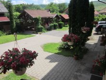 Bed & breakfast Romania, Evelyn Guesthouse