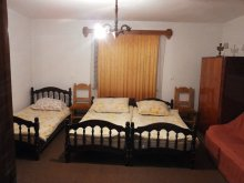 Guesthouse Cluj county, Anna Guesthouse
