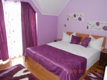 Bed & breakfast Romania, Vura Guesthouse
