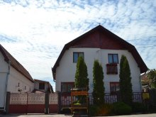 Guesthouse Romania, Nisztor Guesthouse