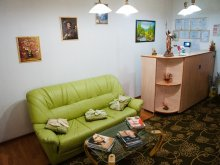 Accommodation Sibiu county, Gasthof Sara B&B