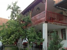 Accommodation Alba county, Piroska Guesthouse