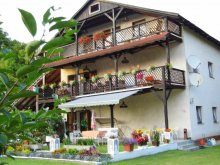 Bed & breakfast Somogy county, Villa Negra Guesthouse