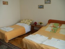 Discounted Package Hungary, Dózsa Apartment