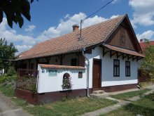 Apartment Heves county, Csillik Guesthouse