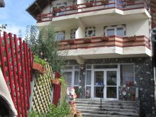 Accommodation Prahova county, Select Guesthouse