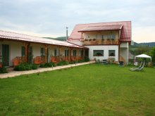 Bed & breakfast Cluj county, Poezii Alese Guesthouse