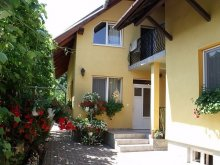 Guesthouse Cluj county, Balint Gazda Guesthouse