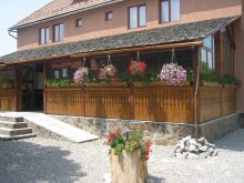 Accommodation Covasna county, Botimi Guesthouse