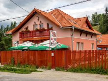 Bed & breakfast Romania, Picnic Guesthouse