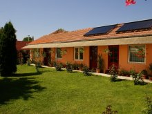 Accommodation Bihor county, Turul Guesthouse & Camping