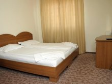 Accommodation Sibiu county, Flamingo Guesthouse