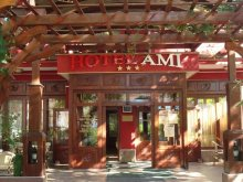 Accommodation Bihor county, Hotel Ami