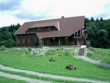 Accommodation Covasna county, Csipkés Guesthouse