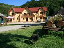 Bed & breakfast Cluj county, Dariana Guesthouse