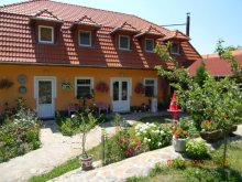 Bed & breakfast Covasna county, Todor Guesthouse