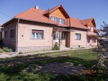 Bed & breakfast Cluj county, Ady Pension