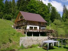 Chalet Alba county, Cota 1000 Chalet