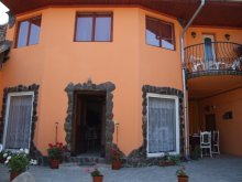 Accommodation Sibiu county, Casa Petra B&B