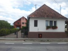 Guesthouse Cluj county, Andrey Guesthouse