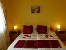 Accommodation Heves county, Napraforgó Guesthouse