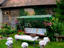 Guesthouse Cluj county, Stork's Nest Guesthouse