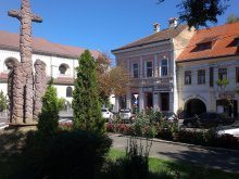 Bed & breakfast Romania, Korona Guesthouse