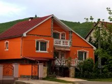 Apartment Heves county, Liget Guesthouse