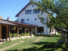 Accommodation Braşov county, Adela Guesthouse